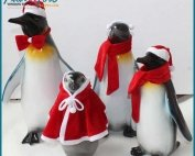 Lovely Decoration Resin Penguin Statues
