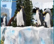 Fake Larg Foam Iceberg Penguin Park Display