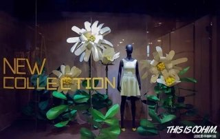 floral window displays